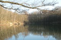 Frühjahrsimpressionen-2020-Gersdorf-60